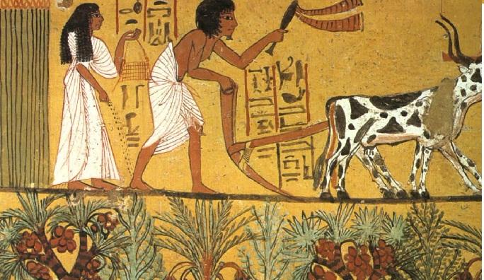 Agricultura ( a.C.)